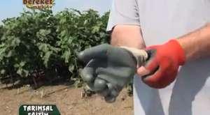 Massey Ferguson-Tarım Teknolojileri, Tarım alet ve edavatları