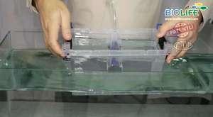 Akvaryumun suyu nasıl değiştirilir?