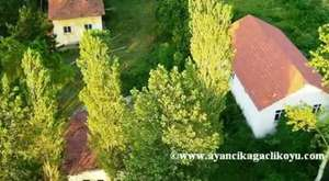 Unutamadıklarımız-(1)- Ayancık Ağaçlı Köyü- Hastane Önünde İncir Ağacı