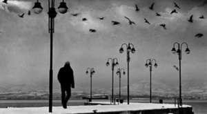 İsimsiz Günler Yaşadım..Seçil oğuz şiiri,Serhat Aslan yorumu..