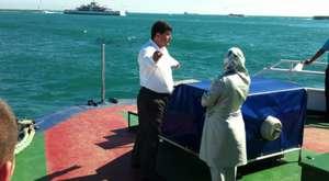 Yunus Balıkları ve İstanbul Boğazı