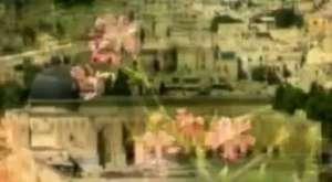 Grup Cennet Kuşları - Ya Taiba
