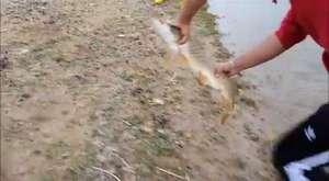 paragat ile balık avı