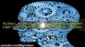 Yıldırım Çarpması - Türkçe Dublaj Belgesel
